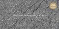 Кварцевый агломерат Vicostone Thunder Grey BQ 8716 СЛЭБ 30 mm 3050Х720